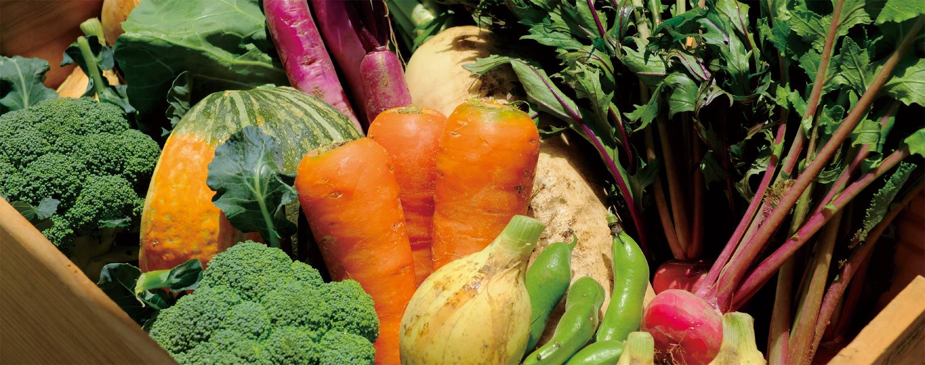 有機野菜の商品画像